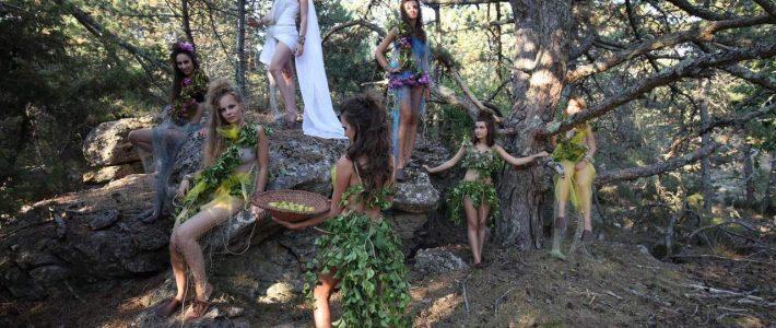 Terra Croatica – Bročko blogo: Vile